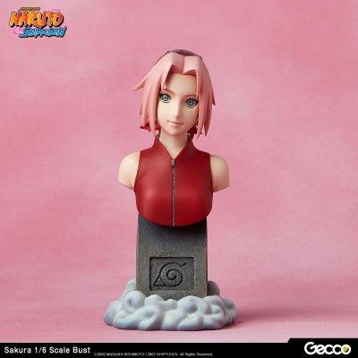 Photo2: Naruto Shippuden, Sakura Haruno 1/6 Scale Bust